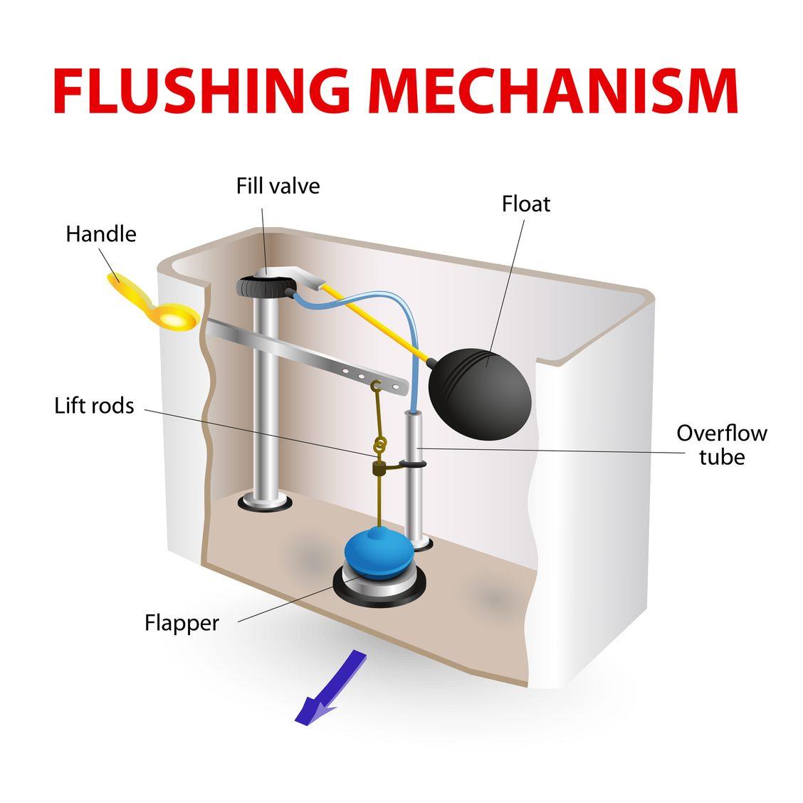 toilet flushing mechanism diagram image